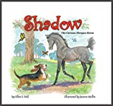 img - for Shadow: The Curious Morgan Horse book / textbook / text book