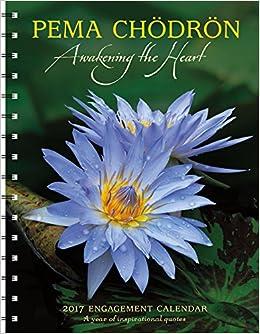 lotus blossoms water lilies 2008 calendar