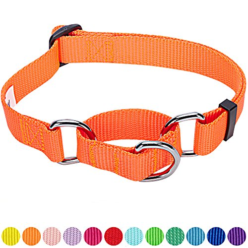 Blueberry Pet 12 Colors Safety Training Martingale Dog Collar, Florence Orange, Large, Heavy Duty Nylon Adjustable Collars for - Orange Dog Collar