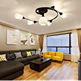 TiptonLight Chandelier Lighting with 6 Heads without Light Bulb-Modern Style for Sitting Room,Dining-room,Study,Corridor,Bedroom