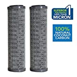 Clear2o CUF1252 Universal Advanced Premium Carbon Filter Standard Capacity Whole House & RV Water Filter - 2 Filters Included