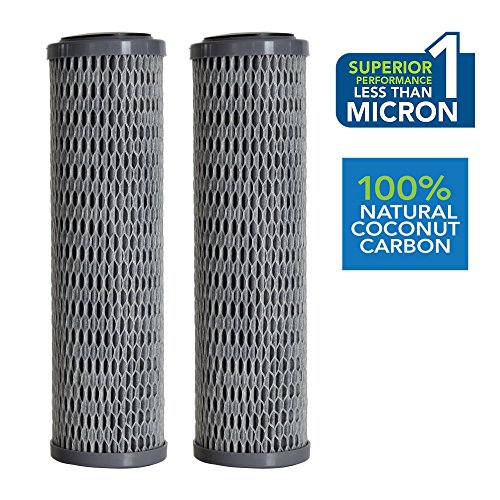 Clear2o CUF1252 Universal Advanced Premium Carbon Filter Standard Capacity Whole House & RV Water Filter - 2 Filters Included by Clear2o