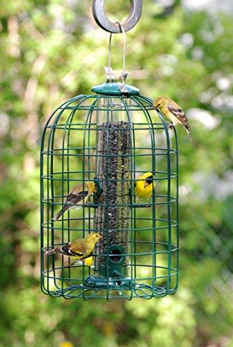 Audubon NATUBE3