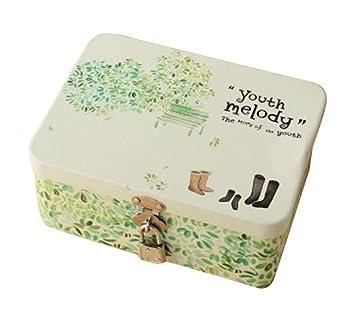Caja de seguridad linda caja de caja de cosméticos box-s / botas