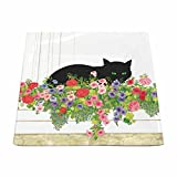 Paperproducts Design 28206 Small Square Plate Featuring Black Cat Flower Box, Multicolor