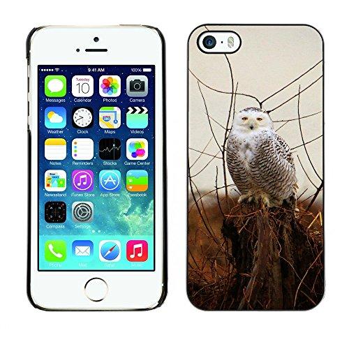 Hülle Case Schutzhülle Cover Premium Case // F00000014 Schneebedeckt // Apple iPhone 5 5S 5G
