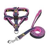 2PCS/Set Pet Dog Nylon Harness Rope Cord Outdoor Walking Adjustable Pet Leash Traction Belt Rope Pet Dog Accessories - Pink L