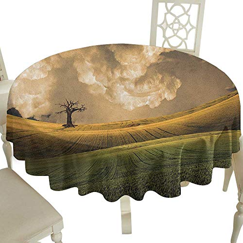 Grid round table cloth 70 Inch Nature,Serene Landscape with the Dramatic Sky and a Single Tree on the Hill Image Print Multicolor Suitable for traveling,outdoors,family,restaurant,coffee shop More