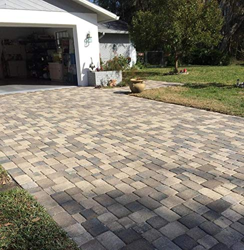 1 Gallon Dominator NG+, No Gloss Paver Sealer (Wet Look) - Commercial Grade, Water Based, Color Enhancing, Easy Application by BLACK DIAMOND COATINGS INC. (Image #2)