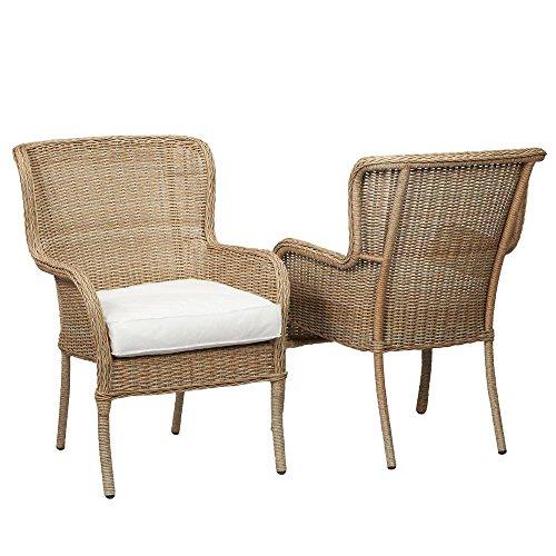 Hampton Bay D11230-D-B Lemon Grove Stationary Patio Dining Chair with Cushion Insert 2-Pack