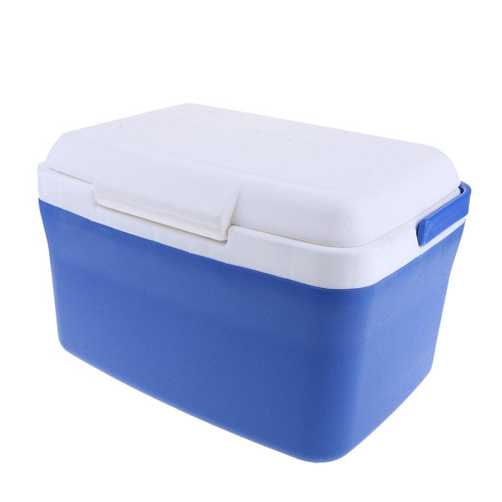 Baosity Portable 8L Mini Auto Fridge Truck Home Freezer Travel Car Refrigerator Cooling & Heat insulation box