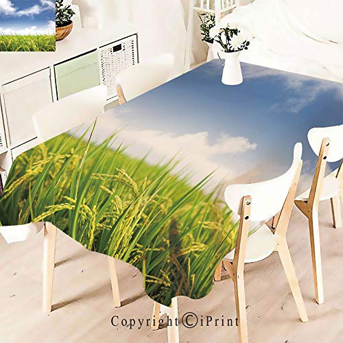 Elegant Tablecloth Waterproof Spillproof Polyester Fabric,Farm Paddy Rice Field Agriculture Food Table Cover for Kitchen Dinning Tabletop Decoration,W55 xL83,Sky Blue Apple Green
