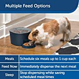 PetSafe Automatic 6 Meal Pet Feeder - Cat and Dog