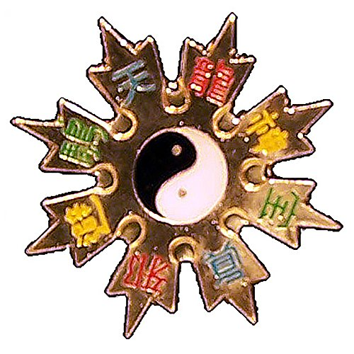 Yin Yang Throwing Star Pin