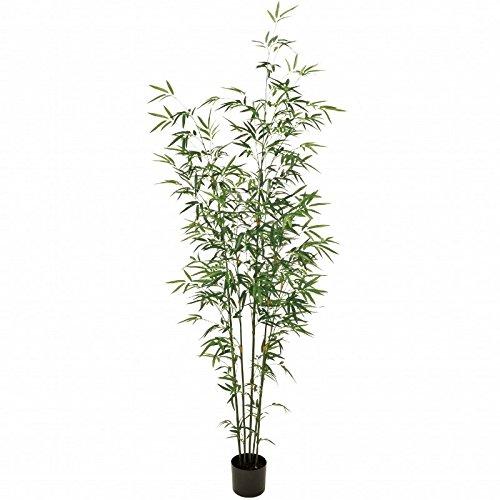 人工観葉植物 バンブーツリーポット6F 高さ180cm fg371 B0723D7XZ2