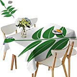 UHOO2018 Polyester Fabric Tablecloth Square/Rectangle Chia chia Seeds Isolate on White backgroun for Picnic,Outdoor or Indoor,50 x111inch