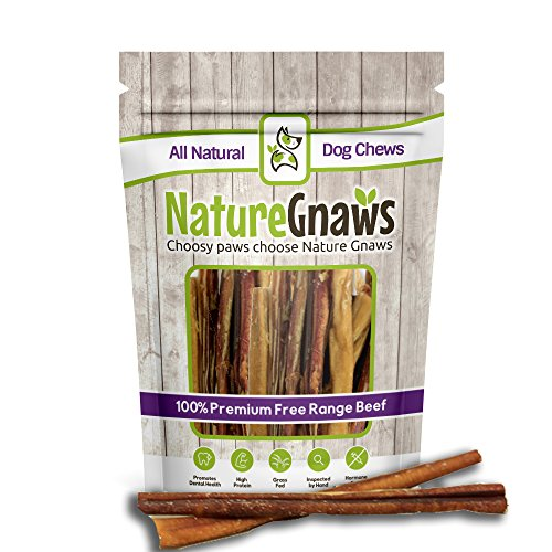 Nature Gnaws Large Bully Sticks 11-12 (10 Pack) - 100% All Natural Grass-Fed Free-Range Premium Beef Dog Chews