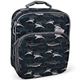 Insulated Durable Lunch Bag - Reusable Meal Tote With Handle and Pockets (Sharks)