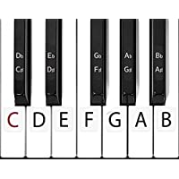 SCRIB Piano Stickers for Keys Easy Installation...