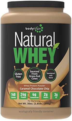 Bodylogix Natural Whey Protein Nutrition Shake 51AoDGJ 2BfDL