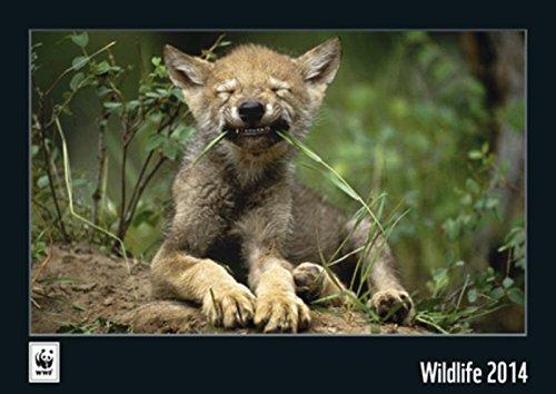 WWF Wildlife 2014