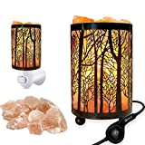 Set of 2 Pack Forest Design Himalayan Salt Lamp Table Lamp Night Light Air Purifier(4.1x6.5in),Touch Dimmer Switch Control with Forest Wall Night Light Set,Perfect Fit Himalayan Gray Salt Lamp