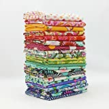 Slow and Steady Fat Quarter Bundle (TP.SS.25FQ) by Tula Pink for Freespirit
