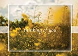 Sympathy Greeting Cards - S1701. Greeting Cards Featuring a Sunny Field of Wheat and Flowers and a Thinking Of You Message. Box Set Has 25 Greeting Cards and 26 Bright White Envelopes.