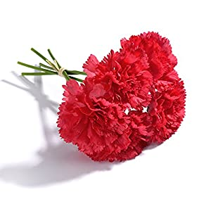 Artificial Silk Carnations Fake Flowers Bouquet for Mother's Day Wedding Bouquets Weddings Cemetery Crafts Decoration, Pack of 15 (Red) 113