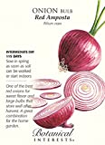 There is nothing like this sweet red onion on a hamburger in a salad or in relishes. It grows large, coppery red and globe shaped. The packet contains enough seed for one 40 foot row.