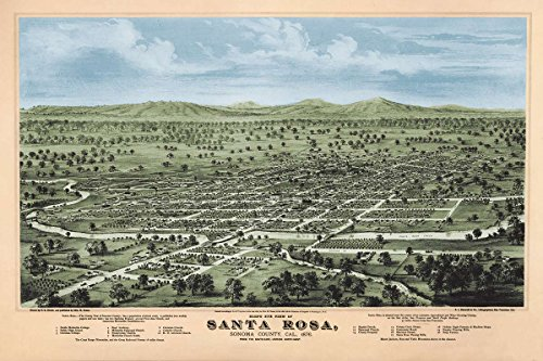 Bird's eye view MAP of Santa Rosa, Sonoma County, California circa 1876 - measures 24