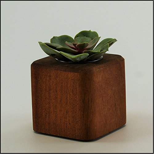 """Woodberry Desktop Collection Planter. Handcrafted From Solid Dark Mahogany or White Maple Hardwood. Part of the """"Woodberry Desktop Collection Set"""" (Mahogany, short (2.5""""))"""