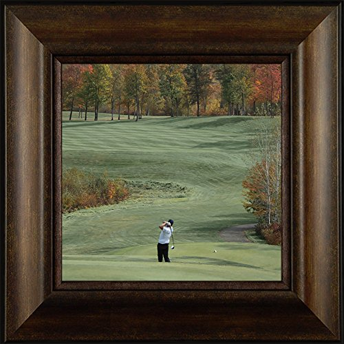 A Shot of Color By Todd Thunstedt 20x20 Sports Golf Club Cart Electric Gas Hole In One Bogey Shoes Shirt Pants Marker Tee Box Scorecard U.S. Open Framed Art Print Wall Décor Picture
