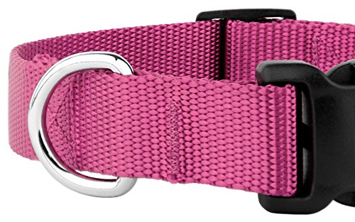 Country Brook Petz 25+ Classic Solid Colors - Deluxe Nylon Dog Collar - Quick Release Buckle, Strong Hardware - Made in The U.S.A. (Extra Large, 1 Inch Wide, Rose)