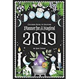Coloring Book of Shadows: Planner for a Magical 2019