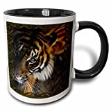 3dRose (mug_108066_4) Beautiful Bengal Tiger Print and Frame - Two Tone Black Mug, 11oz