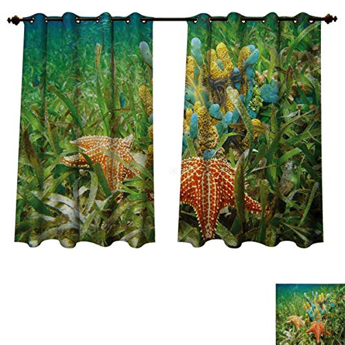 RuppertTextile Starfish Bedroom Thermal Blackout Curtains Underwater Marine Life with Colorful Sponges and Starfish Surrounded by Seagrass Drapes for Living Room Multicolor W55 x L39 -
