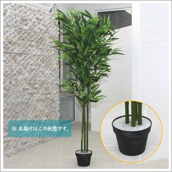 人工観葉植物 光触媒 バンブー 竹 150cm B00TROCBOS