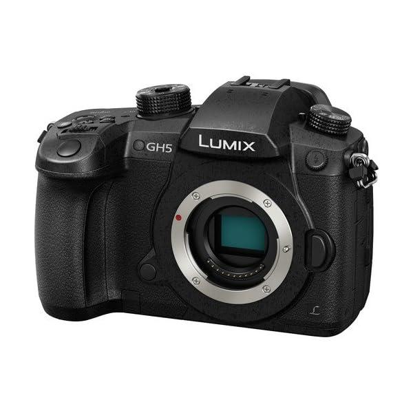 RetinaPix Panasonic Lumix GH5 20.3MP 4K Mirrorless Camera with Leica DG Vario-Elmarit 12-60mm F2.8-4.0 Lens + SanDisk 128GB Extreme Pro SD Card