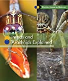 Insects and Arachnids Explained (Distinctions in Nature (Group 2))