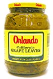 Grape Leaves California 454g 1lb (Orlando)