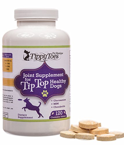 1-BEST-Advanced-GLUCOSAMINE-Hip-and-Joint-Supplement-for-dogs-HIGH-STRENGTH-800mg-Natural-Chewable-Tablets-with-Chondroitin-MSM-Sulfate-for-Dog-Arthritis-Pain-Relief-and-Hip-Dysplasia