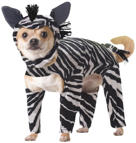 Animal Planet Zebra Baby Costumes (Animal Planet PET20100 Zebra Dog Costume, Large)