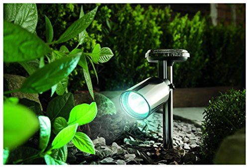 Solar Garden Lights Cole And Bright in US - 6