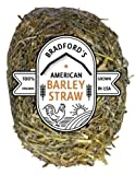 American Barley Straw Algae Treatment up to 1000 Gallon Bale for Clear Ponds No Chemicals, Environmentally Safe