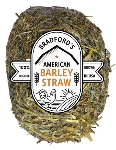 American Barley Straw Algae Treatment up to 1000 Gallon Bale for Clear Ponds No Chemicals, Environmentally Safe by Bradford Homes