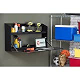 TRINITY Powder Coated Finish Wall Cabinet with Fold-Down Work Surface, Black Matte