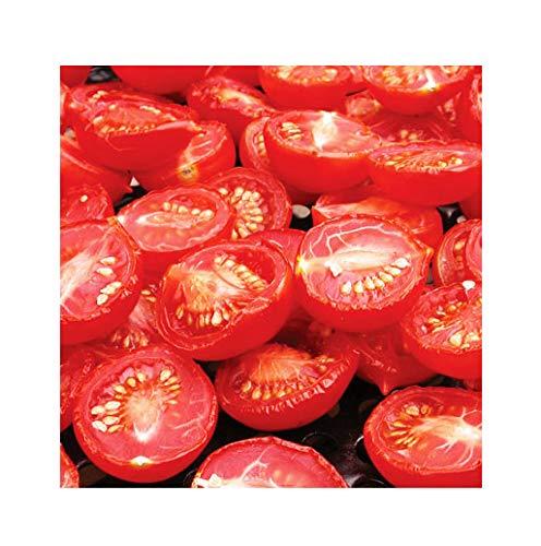 50+ Principe Borghese Tomato Seeds - A Delicious Tomato for Sauces, Paste, Canning - Non GMO - ()