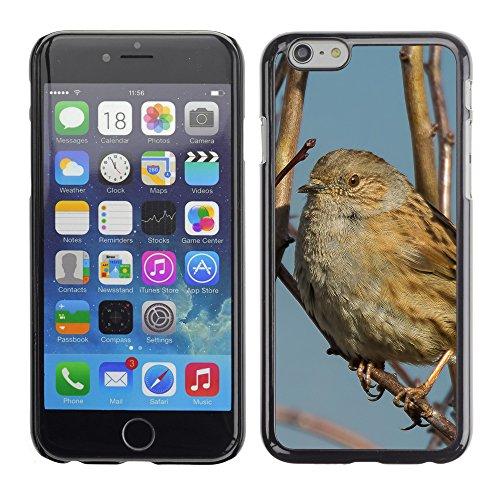 "Premio Sottile Slim Cassa Custodia Case Cover Shell // F00028396 Oiseau chanteur // Apple iPhone 6 6S 6G 4.7"""