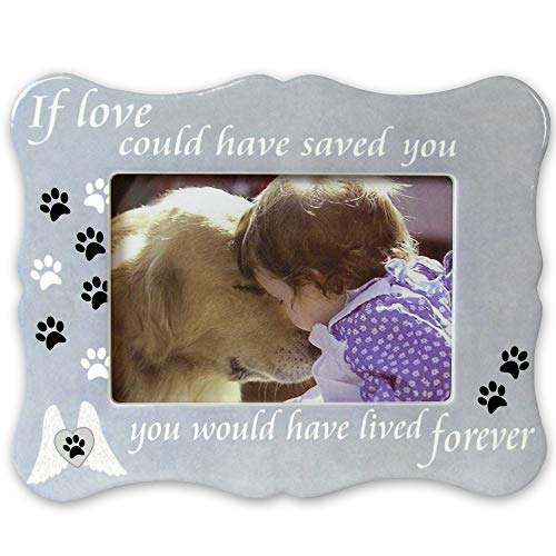 (BANBERRY DESIGNS Pet Memorial Picture Frame - If Love Could Have Saved You Pet Frame - Paw Prints and Angel Wings)